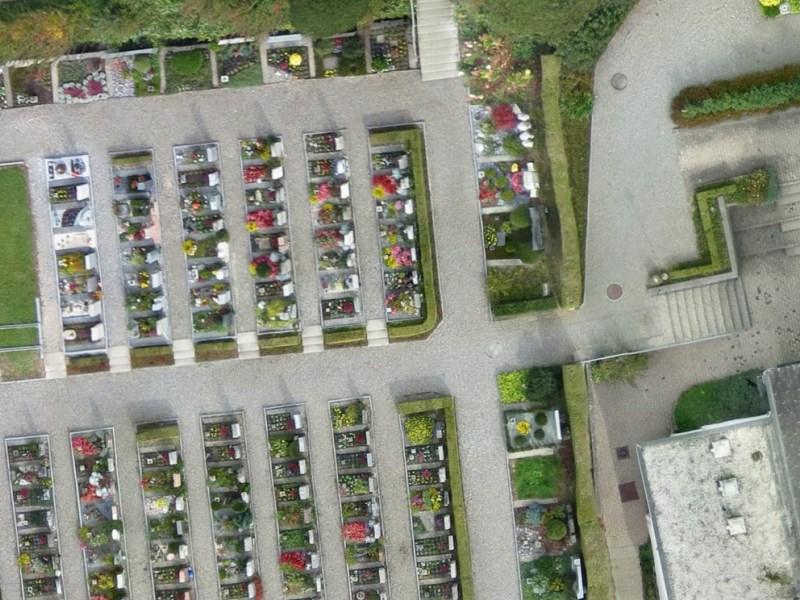 Vermessung und Geomatik: Detailreiches Orthophoto aus Luftbild